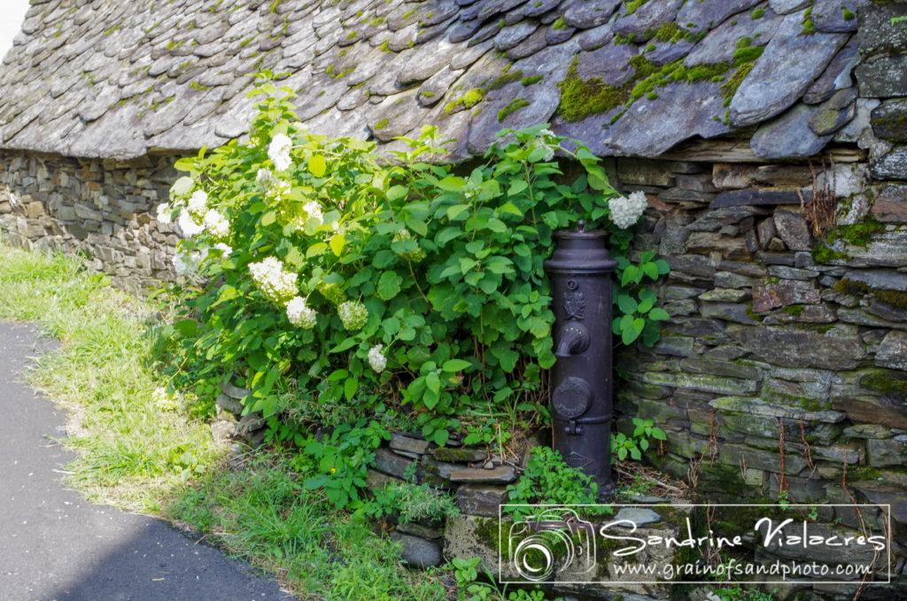 PromenadesAveyronnaise - IMGP1138.jpg