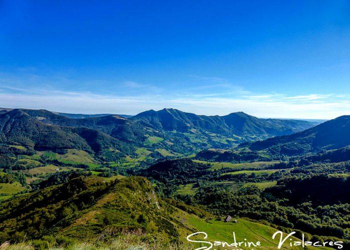 Les Monts du Cantal (11)